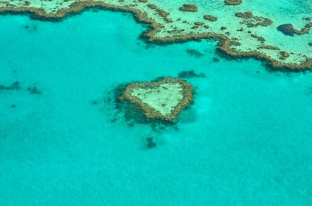 Photo of the Great Barrier Reef.